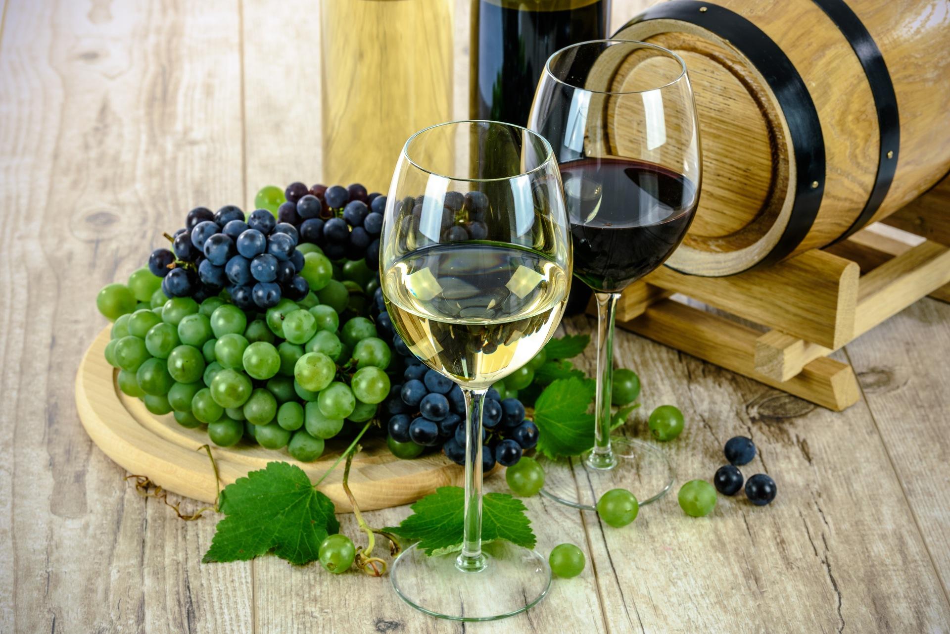 mejores vinos de cantabria