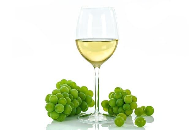 vinos de Cantabria. Bodegas Vidular