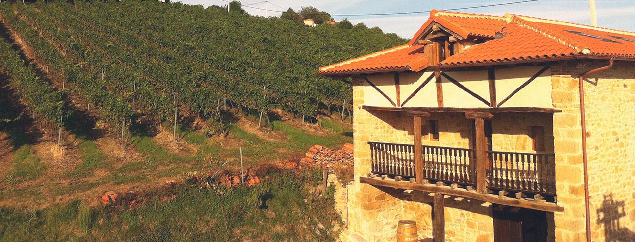 Enoturimo en Cantabria. Bodegas Vidular